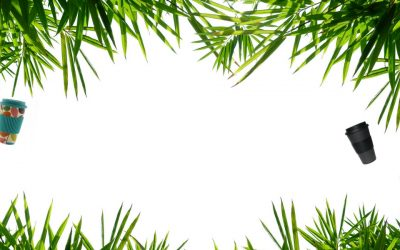 What is bamboo Fiber?